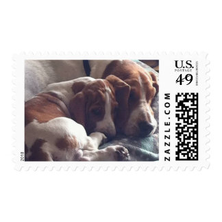 Nothing like a Mother's Love USA Postage Stamp