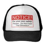 Notice / Dinosaur Hat