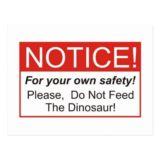 Notice / Dinosaur Post Card