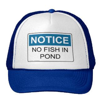 NOTICE No Fish In Pond Hat