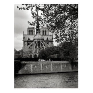 Notre Dame Cathedral Postcard Postcard