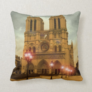 Notre Dame Cojines