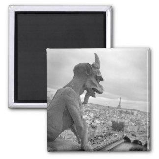 Notre Dame Gargoyle Magnet Magnet