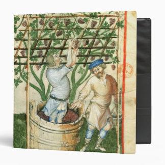 Nouv Acq Lat Gathering and pressing grapes Binder