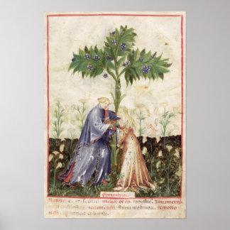 Nouv Acq LatFennel, from 'Tacuinum Sanitatis' Poster