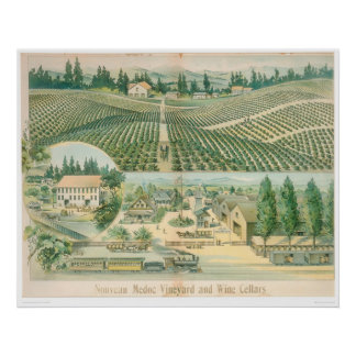 Nouveau Medoc Vineyard and Wine Cellars (1213A) Poster