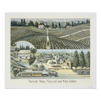 Nouveau Medoc Vineyard and Wine Cellars Poster