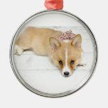 Nova Ornament