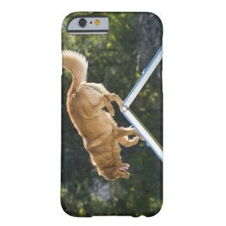 nova scotia duck-tolling retriever barely there iPhone 6 case