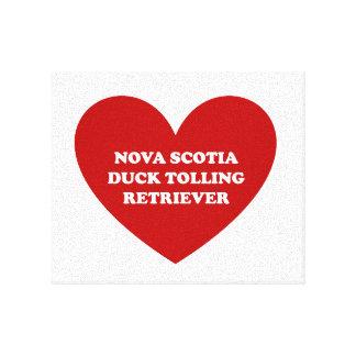 Nova Scotia Duck Tolling Retriever Canvas Prints