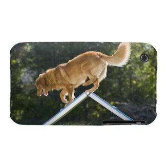 nova scotia duck-tolling retriever Case-Mate iPhone 3 case
