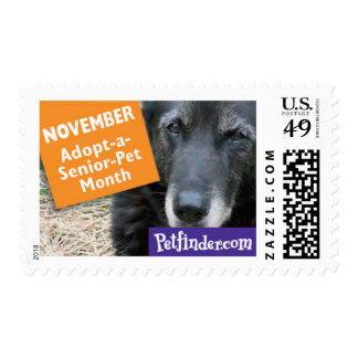 NOVEMBER - Adopt-a-Senior Pet month Postage