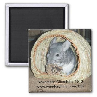 November chinchilla 2012 magnet