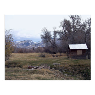 November Field Postcard
