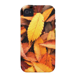 November Leaves iPhone 4 Cover