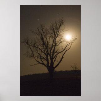 November Moon Poster