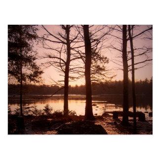 November Morning Postcard