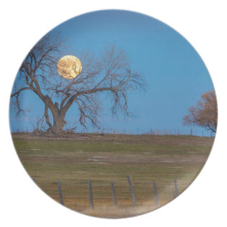 November Supermoon Melamine Plate
