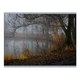 November Tree CC0310 Postcard