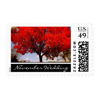November Wedding Postage Stamps