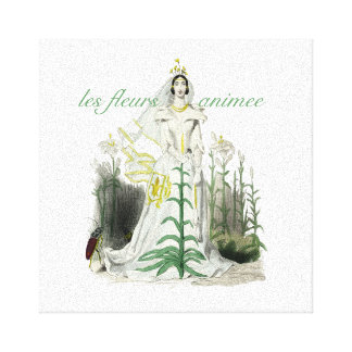 Novia de la flor lona envuelta para galerias