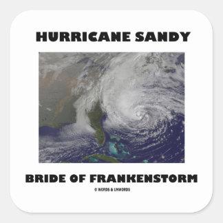 Novia de Sandy del huracán de Frankenstorm Colcomanias Cuadradases