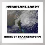 Novia de Sandy del huracán de Frankenstorm Poster