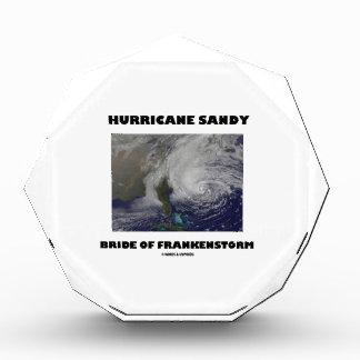 Novia de Sandy del huracán de Frankenstorm