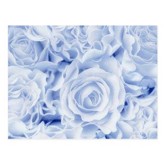 Novia hermosa en el azul, ramo color de rosa, postal