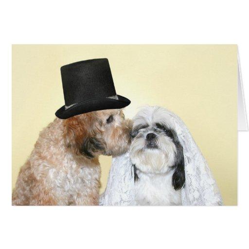 Novia y novio caninos felicitación