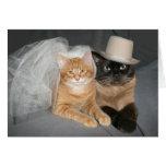 Novia y novio del gatito felicitación