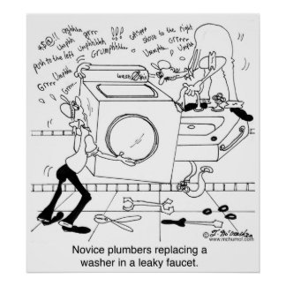 Novice Plumbers Install a Washer Poster
