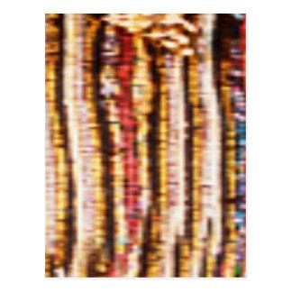 NOVINO Costumes - Enchanting Fabric Patterns Postcards