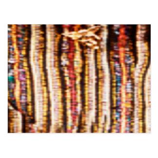NOVINO Costumes - Enchanting Fabric Patterns Post Card