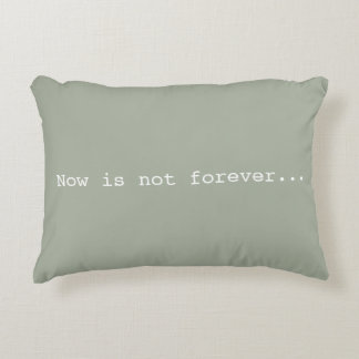 Now is not forever+never is a load of crap pillow