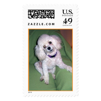 Now? Postage Stamp