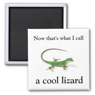 Now that's what I call a cool lizard Magnet