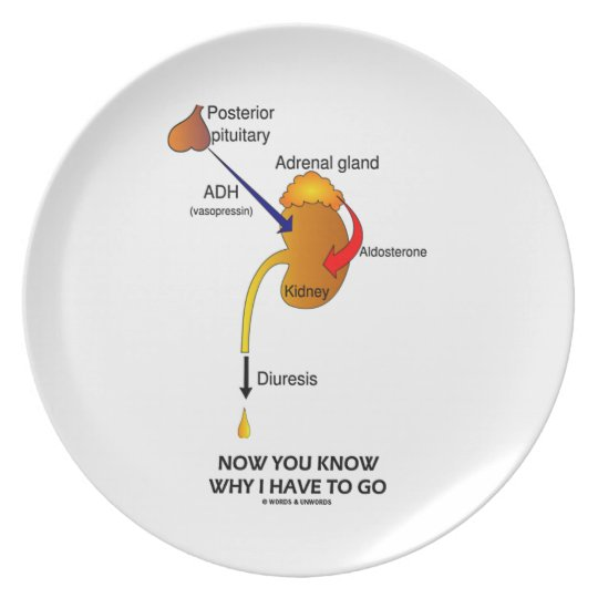 Now You Know Why I Have To Go (Diuresis) Dinner Plate