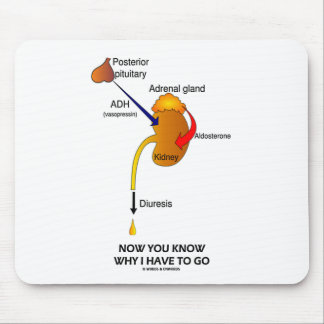 Now You Know Why I Have To Go (Diuresis) Mouse Pad