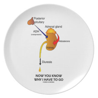 Now You Know Why I Have To Go (Diuresis) Plates