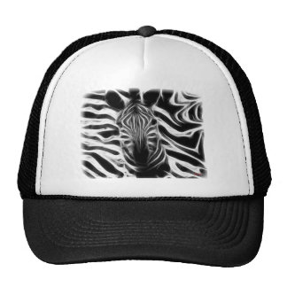 Now You See Me Mesh Hats