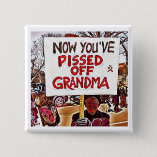 Now you've pissed off grandma pinback button