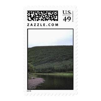 Nowitna River in Summer Stamps