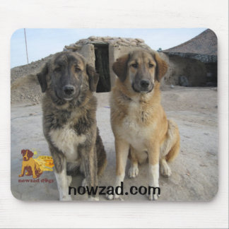 Nowzad Dogs mouse mat