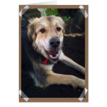 Nowzad Lucky Notecard Greeting Card