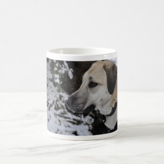 Nowzad Rescue Dog Kilo Coffee Mug