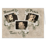 Nowzad Rescue Dogs Notecard Stationery Note Card