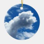 Nube blanca 19