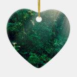 Nube Costa Rica de Monteverde del bosque Adorno De Cerámica En Forma De Corazón