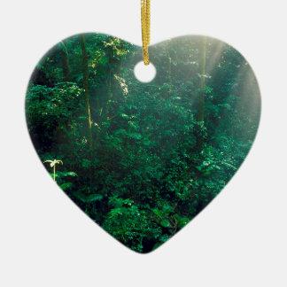 Nube Costa Rica de Monteverde del bosque Adornos De Navidad